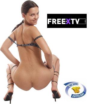 TARJETAS FREEXTV